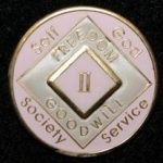 Pink Tri-Plate Medallions 12 Year NA Tri-Plate Pink Medallion